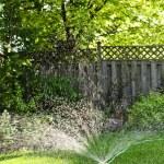zraszania trawnika, podlewanie trawy — Zdjęcie stockowe