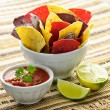 Tortilla chips and salsa — Stock Photo #4468076