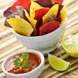 Tortilla chips and salsa — Stock Photo #4468085