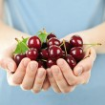 Hands holding bunch of cherries — Stock Photo #4468159