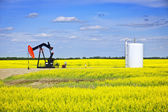 Nodding oil pump in prairies — ストック写真