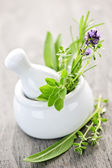 Healing herbs in mortar and pestle — Stock Photo