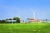 Wind turbines on farm — Stock Photo