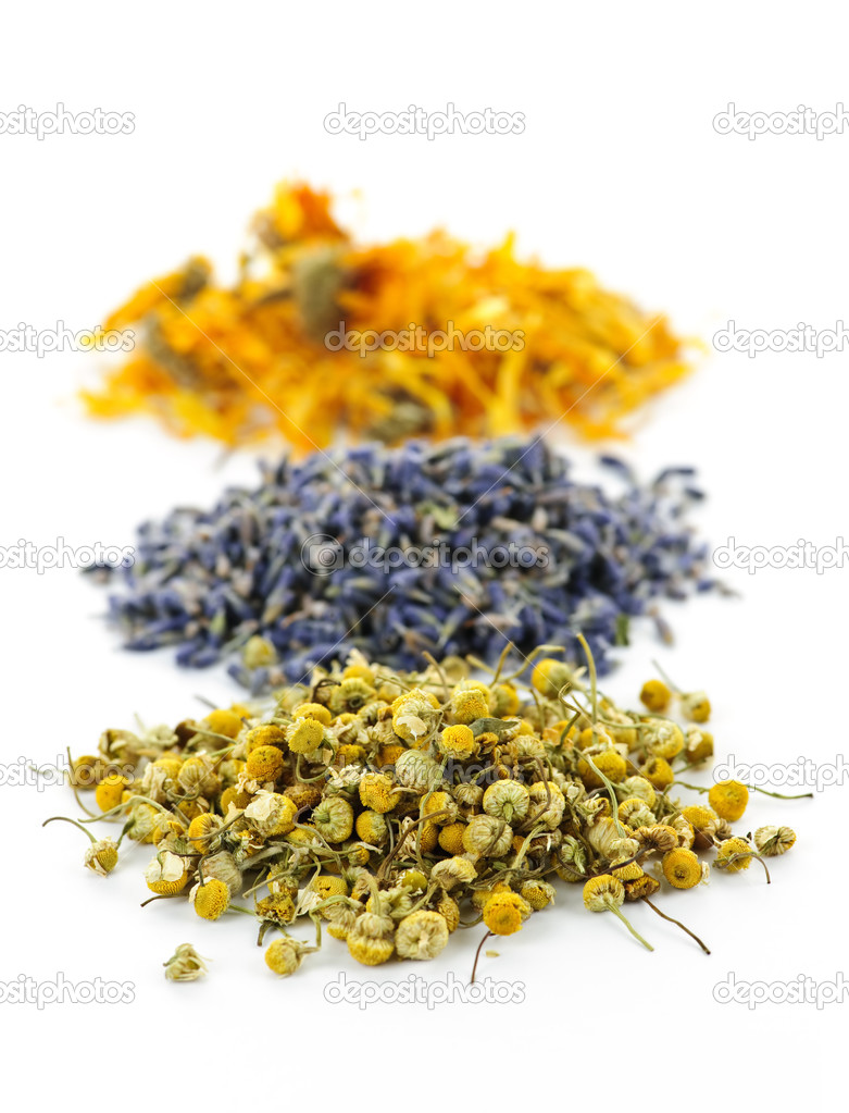 Piles of dried medicinal herbs camomile, lavender, calendula on white background  Stock Photo #4466188