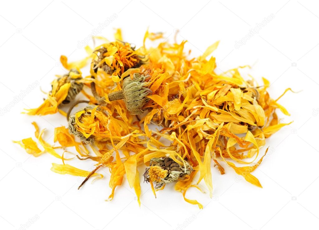 Calendula or pot marigold medicinal herbs on white background — Stock Photo #4466196