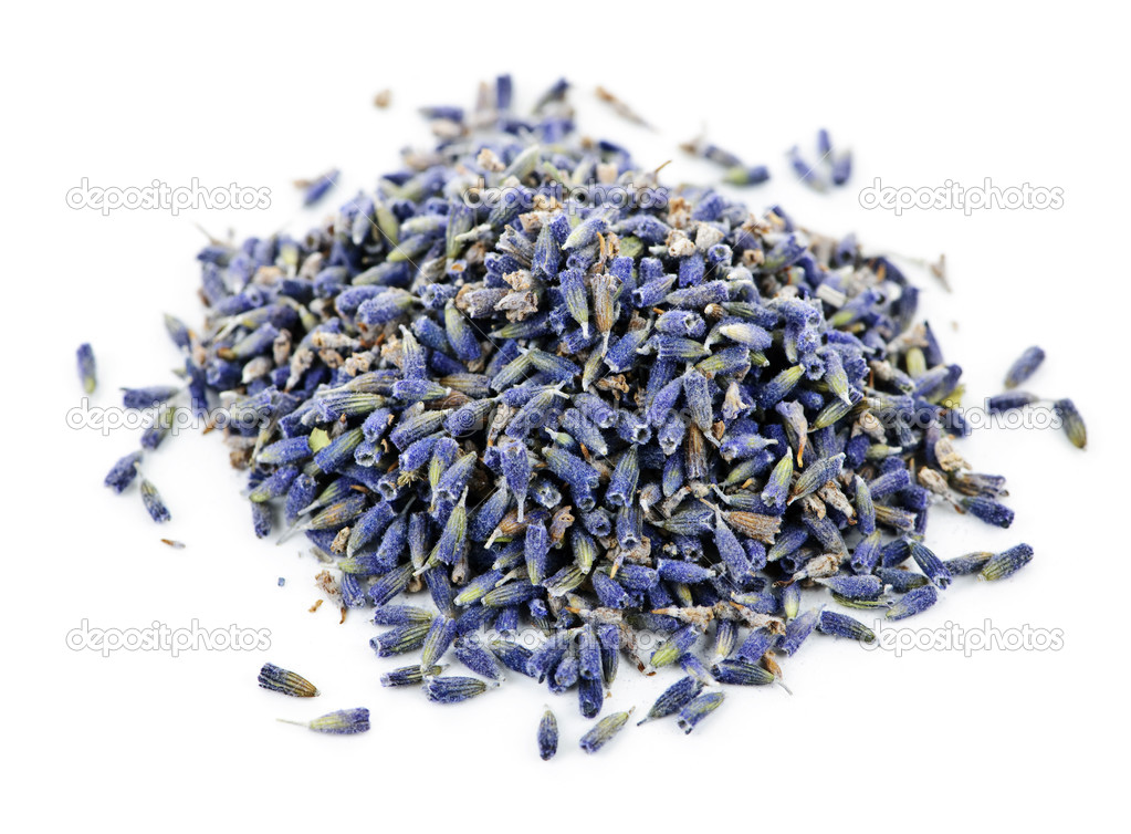 Pile of medicinal lavender herb flowers on white background — Stock Photo #4466206