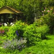 Landscaped garden — Stock Photo #4471012