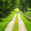 Farm road - Stock Photo
