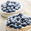 Blueberry tarts - Stock Photo