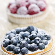 Fruit tarts — Stockfoto