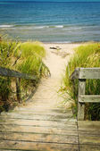 Wooden stairs over dunes at beach — Foto Stock