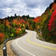 Fall highway — Stock Photo #4482273