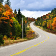 Fall highway — Stock Photo #4482281