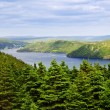 Placentia Bay in Newfoundland — Stock Photo