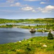 Stock Photo: Beautiful lake shore in Newfoundland