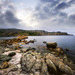 Atlantic coast in Newfoundland — 图库照片