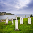 Tombstones near Atlantic coast in Newfoundland — Stock Photo