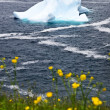 Melting iceberg — Stockfoto #4482708