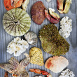 Sea treasures — Foto de Stock