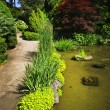 Landscaped garden path and pond — Stock Photo #4483141