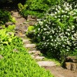 Natural stone garden steps — Stock Photo #4483161