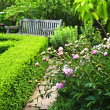 Lush green garden — Stock Photo #4483163