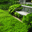 Lush green garden — Stock Photo #4483189