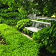 Lush green garden — Stock Photo #4483191