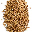 Stock Photo: Buckwheat grain