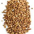 Buckwheat grain — Stock Photo #4483519