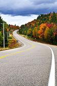 Fall highway — Stock Photo