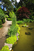 Landscaped garden path and pond — Stock Photo