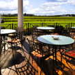 Patio overlooking vineyard — Stock Photo