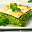 Plate of vegeterian lasagna — Stock Photo