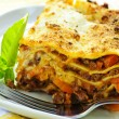 Plate of lasagna — 图库照片