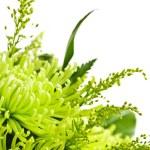 Flower arrangement — Stock Photo #4495391