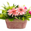 Stock Photo: Isolated flower arrangement