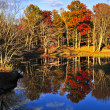 Fall forest reflections — Stock Photo #4495568