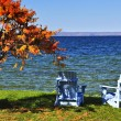 Wooden chairs on autumn lake — Stockfoto