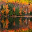 Fall forest reflections — Stock Photo #4495594