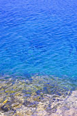 Blue water at shore of Georgian Bay — Stock Photo