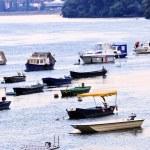 River boats on Danube — Stock Photo #4518152