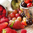 Fruits and berries — Stock Photo