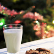 Milk and cookies for Santa — Stock Photo #4518292