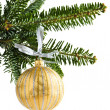 Christmas ornament — Stock Photo #4518297