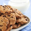 Milk and chocolate chip cookies — Stock Photo #4518480
