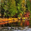 Stock Photo: Fall forest and lake shore