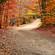 Autumn landscape with a path — Stock Photo #4518749