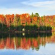 Fall forest reflections — Stock Photo #4518756