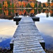 Wooden dock on autumn lake — Stock fotografie #4518788
